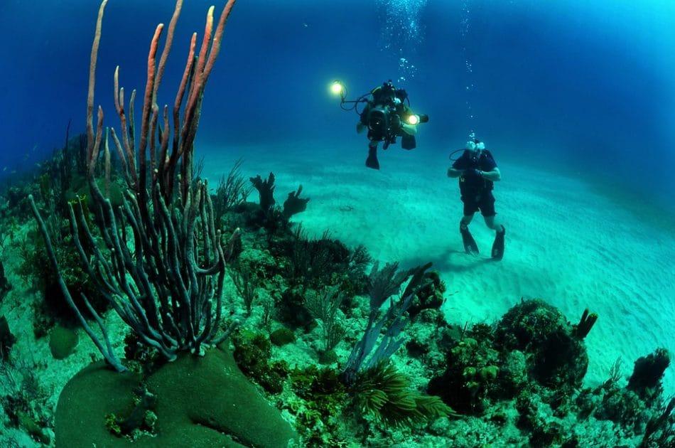 duiken in kroatie